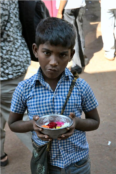 Helping the Orphans of India